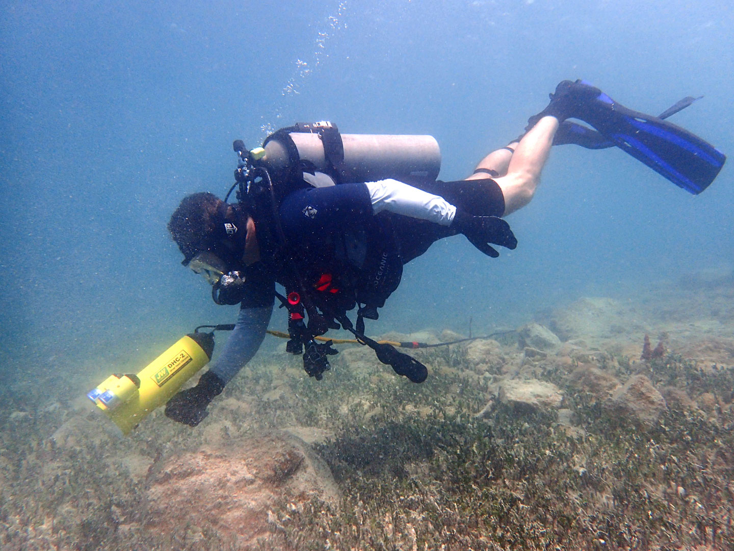 Diver Held Camera DHC-2 in action